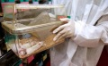 Tout savoir sur le nettoyage avec les chiffons en microfibre